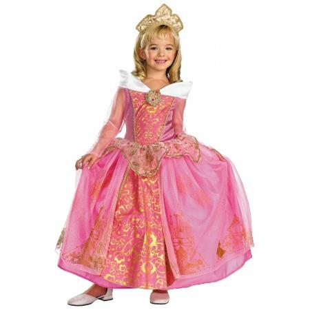 Sleeping Beauty Costume image