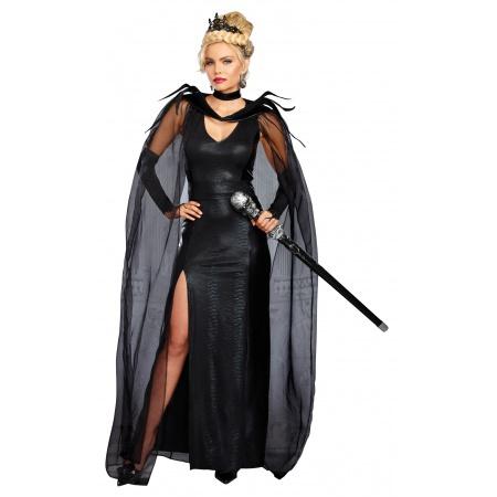 Evil Queen Ravenna Costume image