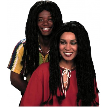 Braided Black Wig image