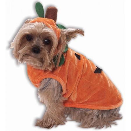 Pumpkin Pet Costume image