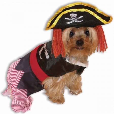 Pirate Pet Costume image