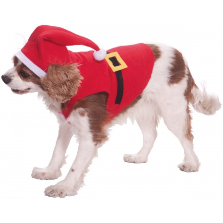 Santa Pet Costume image