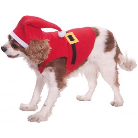 Santa Pet Costume image