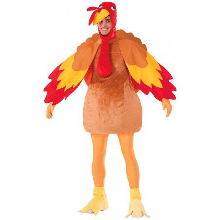 Thanksgiving Costume image