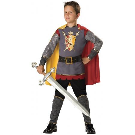 Boys Knight Costume image