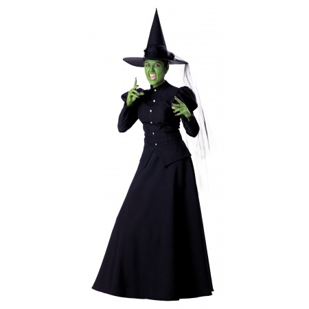 Wicked Witch Costume image