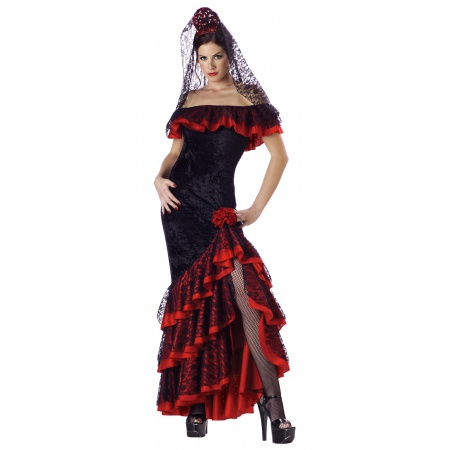 Flamenco Dancer Costume image