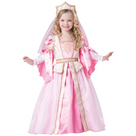 Renaissance Princess Costume image
