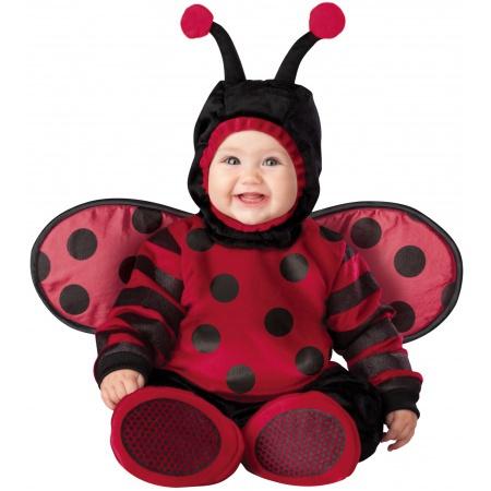 Baby Ladybug Costume image