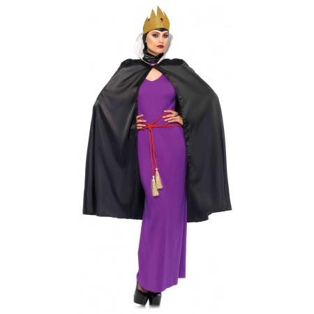 Snow White Evil Queen Costume image