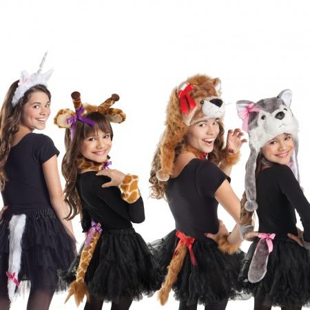 Animal Costumes image