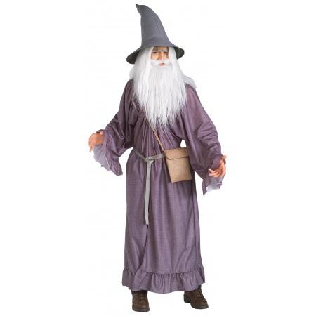 Gandalf Costume image