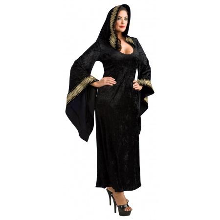 Sorceress Costume image