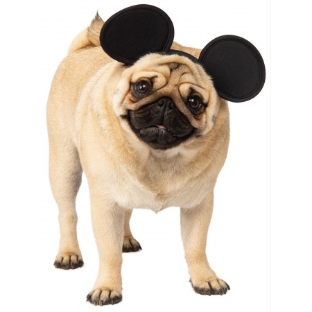 Mickey Ears For Dogs image