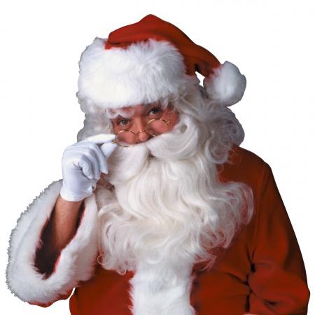 Teviron Fiber Santa Wig And Beard Costume Accessory Claus image
