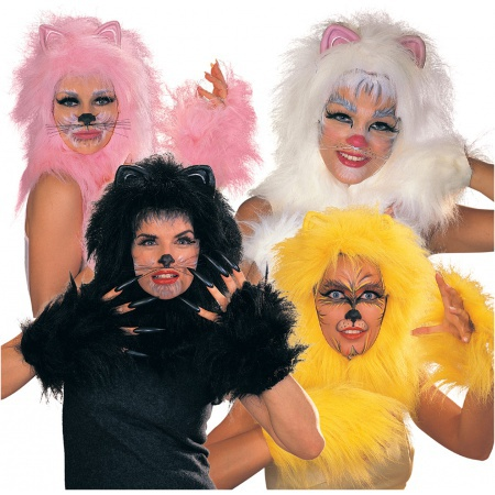 Broadway Cats Costumes image