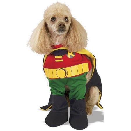 Robin Dog Costume image