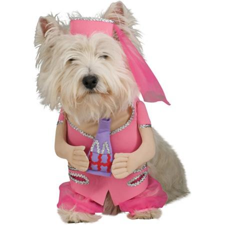 I Dream Of Jeannie Dog Costume image