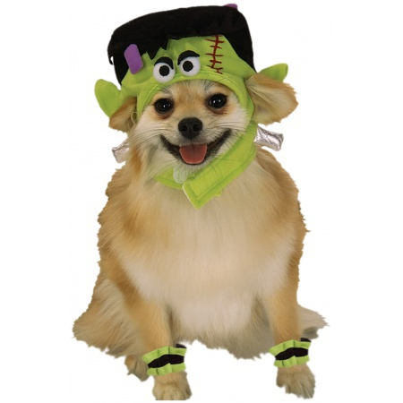 Frankenstein Dog Costume  image