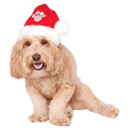 Christmas Dog Santa Hat image