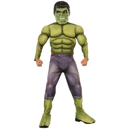 Boys Hulk Costume image