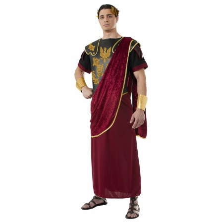 Julius Caesar Costume image