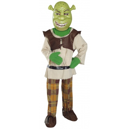 Kids And Toddler Shrek Costume image