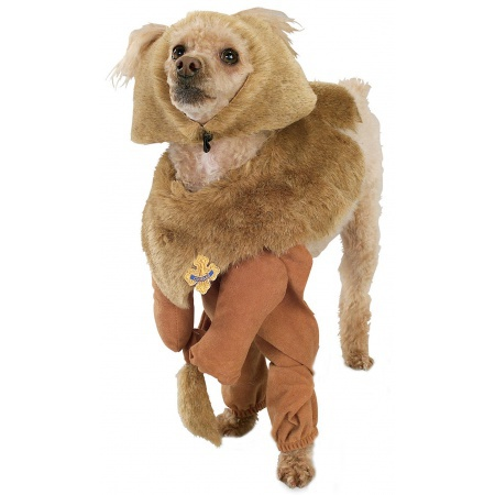 Cowardly Lion Pet Costume image