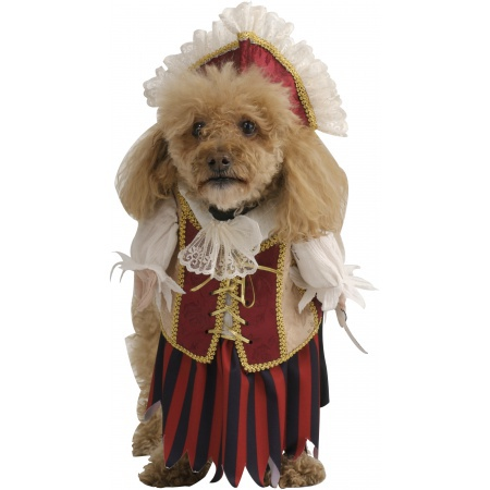 Female Dog Pirate Costume image