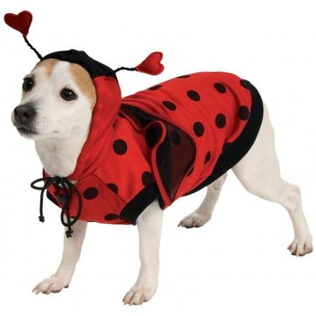 Ladybug Dog Pet Costume Doggy Lady Bug image