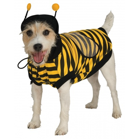 Bumblebee Dog Pet Costume Doggy Bumble Bee Bug image