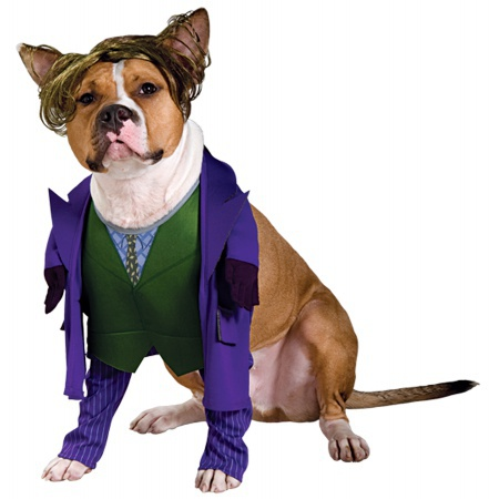 The Joker Dog Pet Costume Doggy Villain image