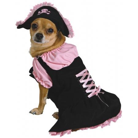 Dog Halloween Costumes Pirate image