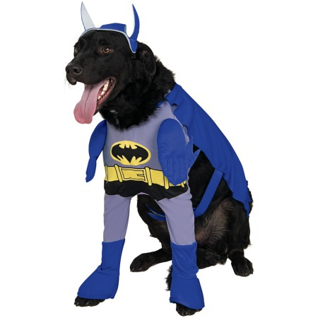 Superhero Dog Batman Costume image