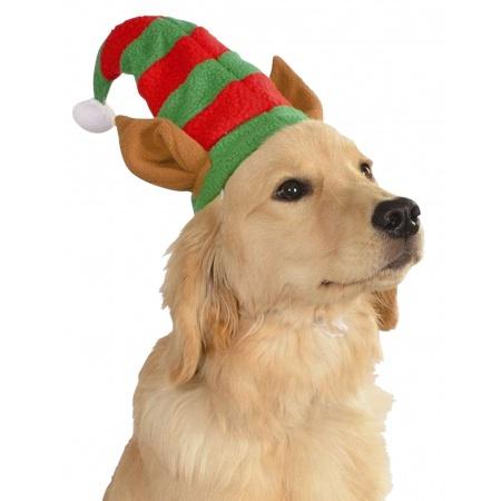 Dog Elf Hat image