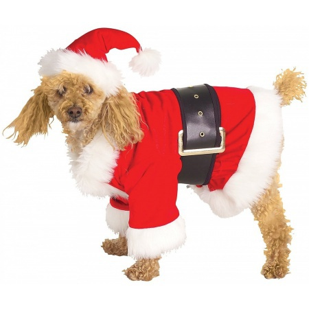Dog Santa Costume image