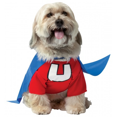 Underdog Costume For Dogs image
