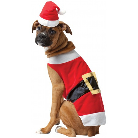 Santa Dog Costume image