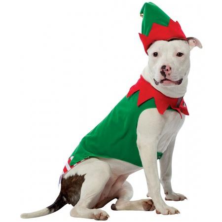 Christmas Elf Dog Costume image