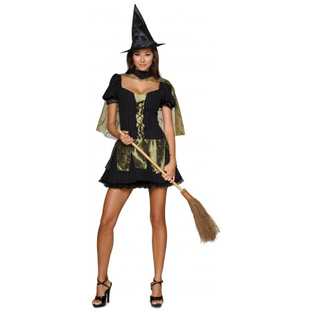 Wicked Witch Costume Wizard Of Oz image
