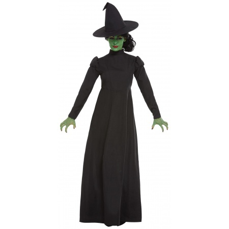 Witch Costume  image